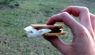The Perfect Smore